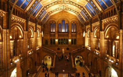 Natural History Museum, em Londres